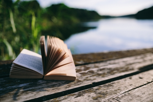 Adresses fournisseurs livres et films écologie