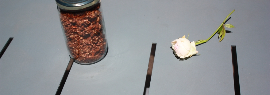 Recette granola bio