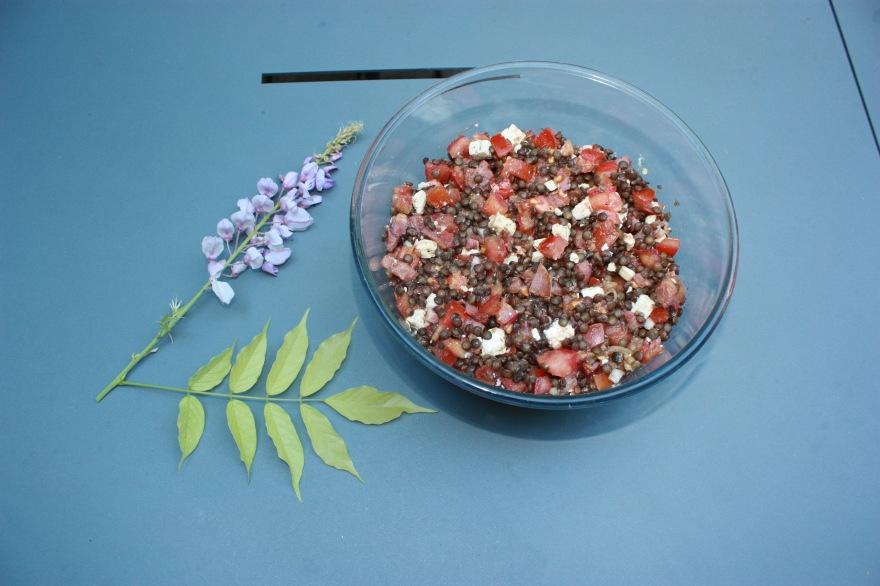 Recette de salade de lentilles bio